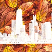 what to do in Chicago this weekend
